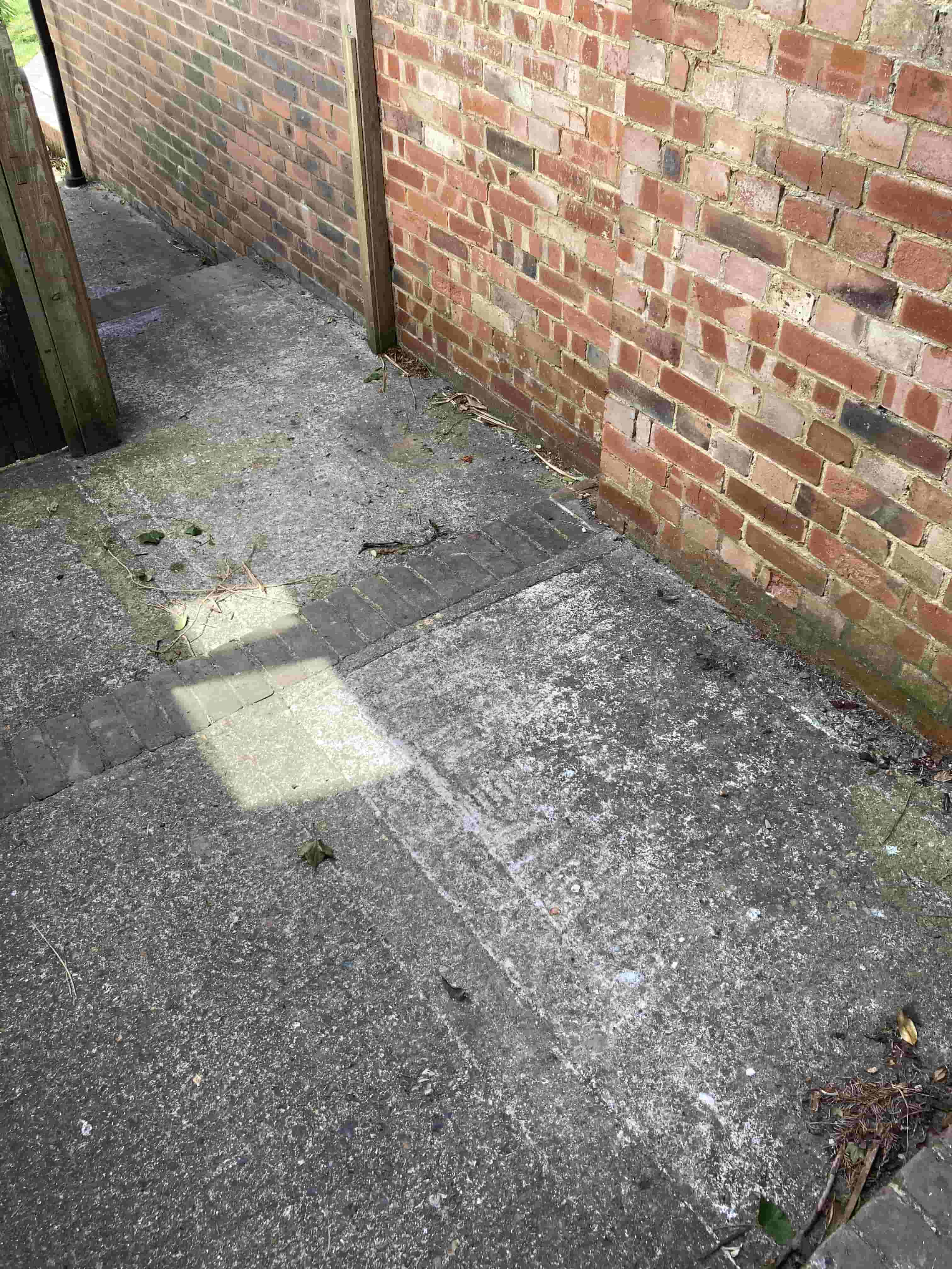 Concrete Path and Steps Before Cleaning Folkstone